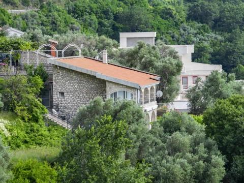 Дом с бассейном в Режевичи