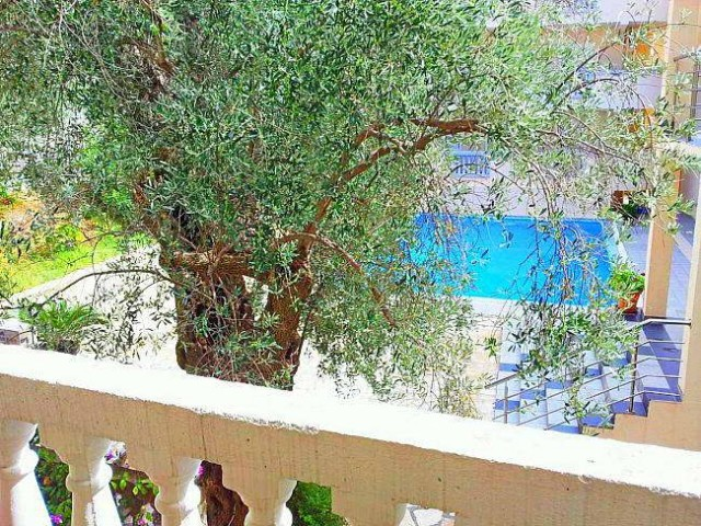Сдается квартира в Петроваце с бассейном